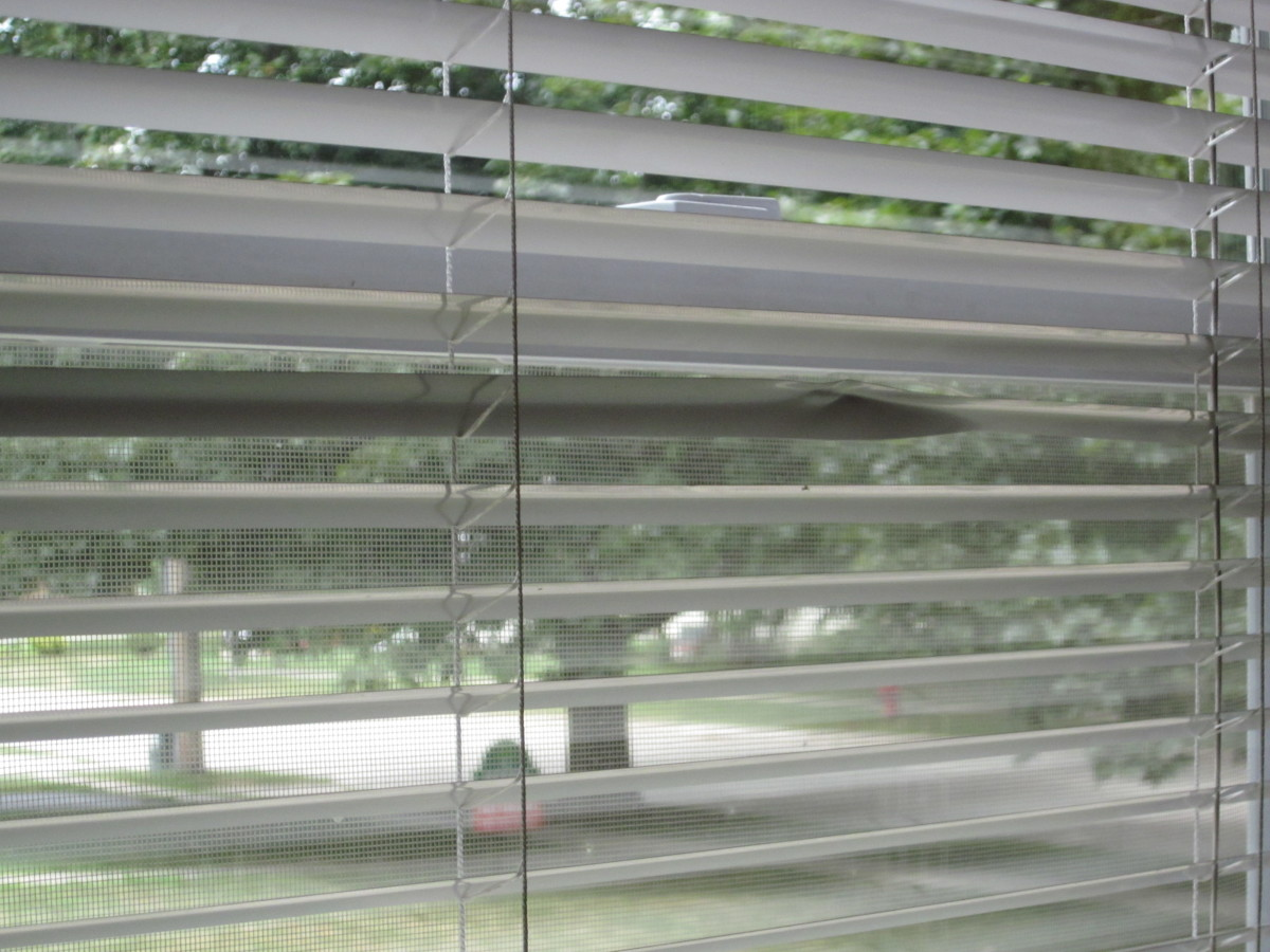 Creased Aluminum Mini Blinds that need to be Removed