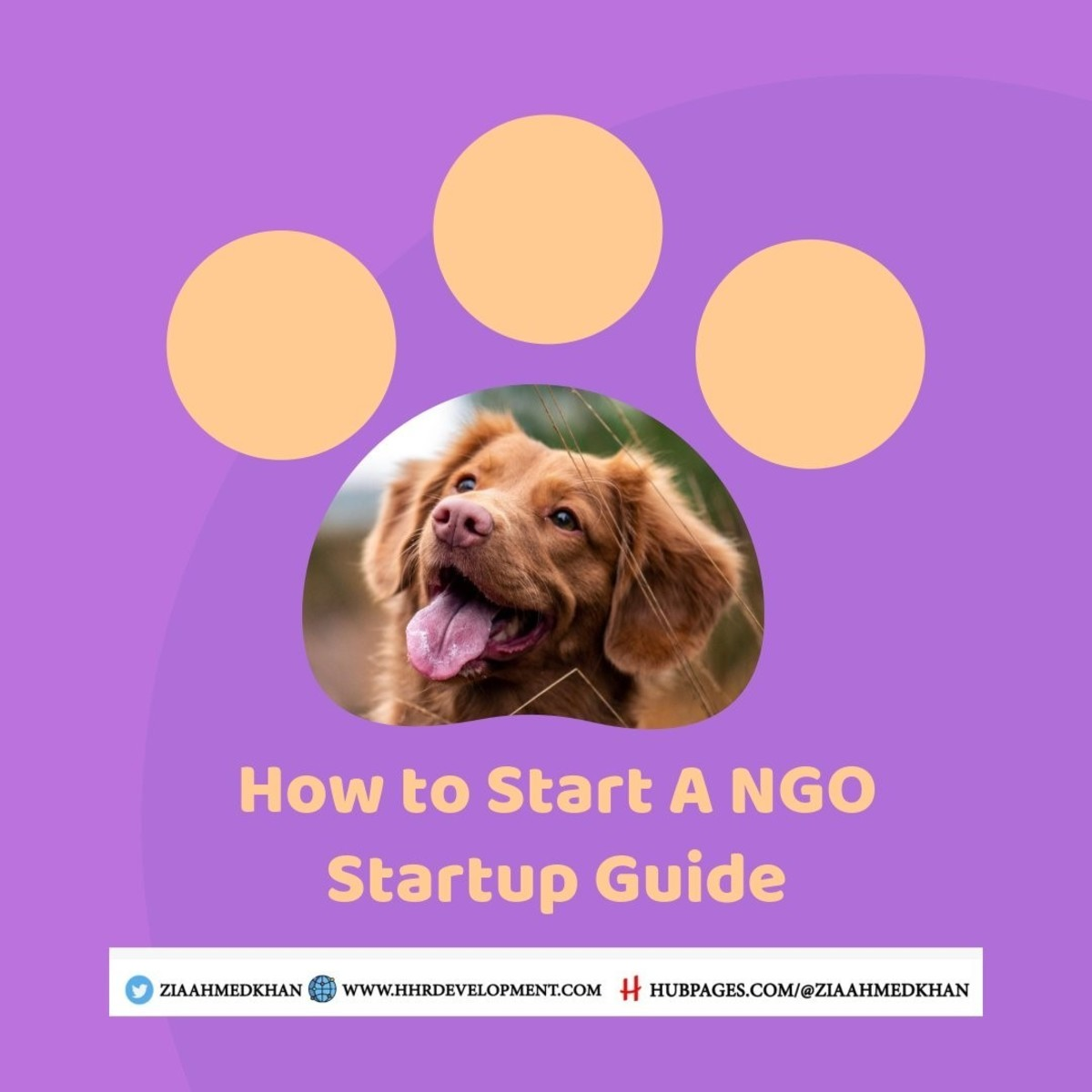 How to Start a NGO