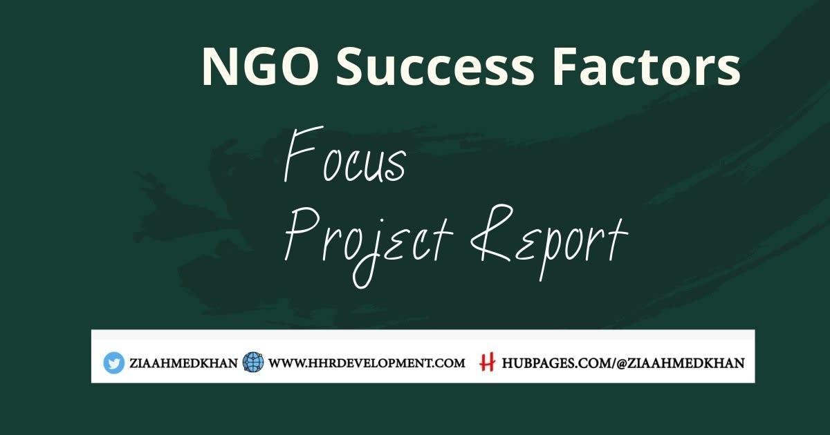 NGO Success Factors