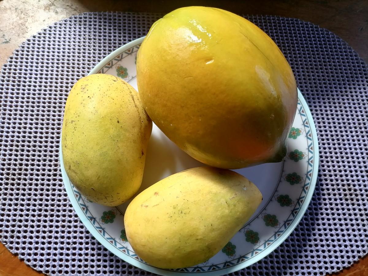 Fresh mango and papaya in a fruit bowl