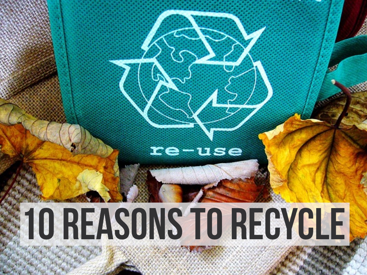 For my top 10 reasons to recycle, please read on...
