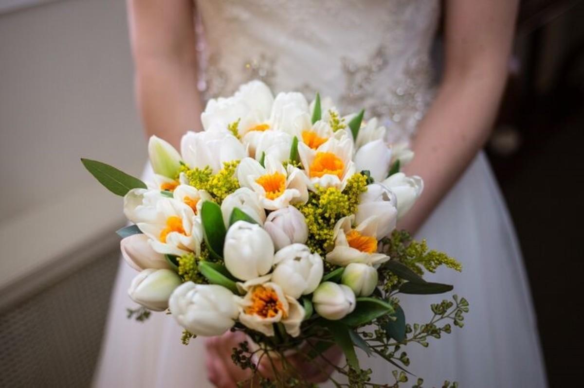 The delicate daffodil