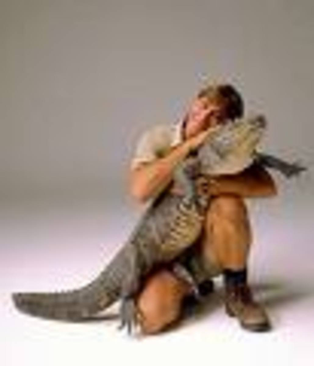 """The late Steve Irwin with """"Pet.""""  He genuinely loved crocs and was rarely hurt by them...but he didn't tackle 20 foot Salties."""