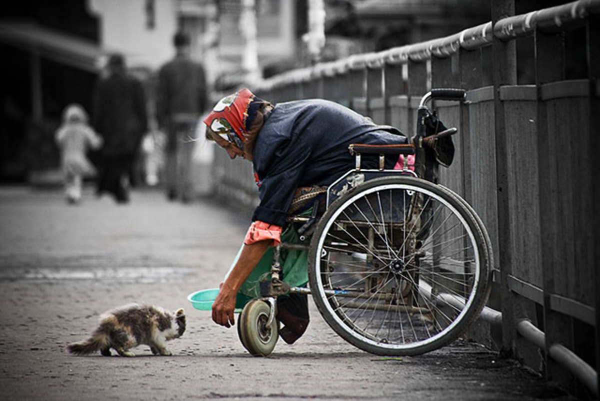 The generous heart of the poor beats to all the living creature