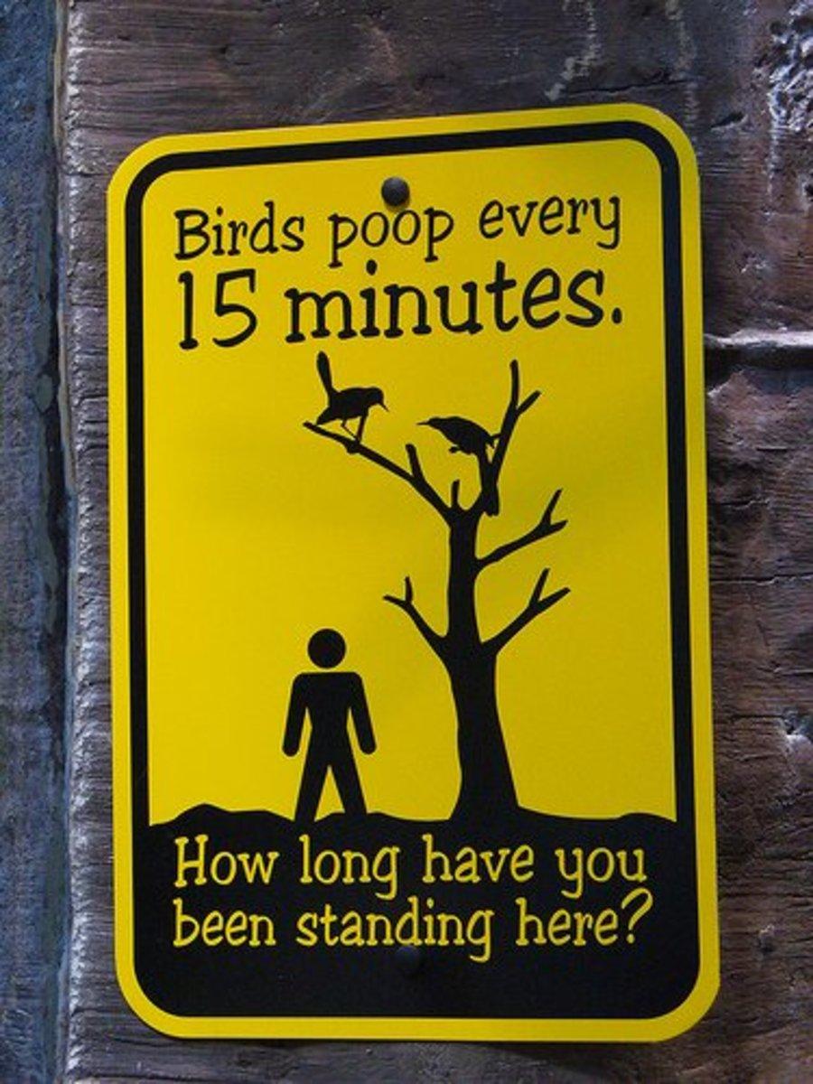 A WARNING TO PEDESTRIANS