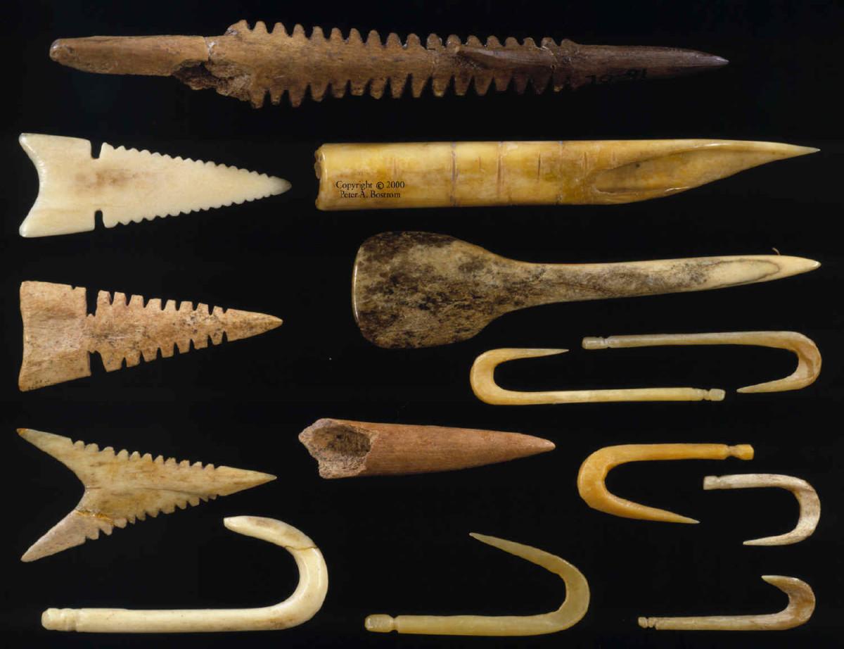 Mound #72 Bones and Artifacts