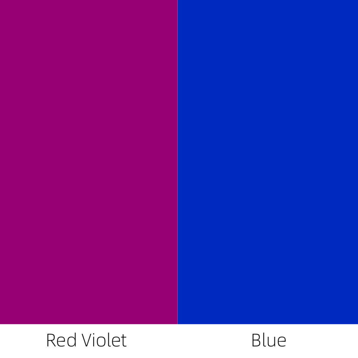 When red-violet is placed next to blue, then the red-violet is perceived as a warm color.