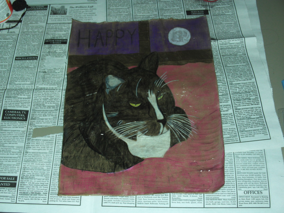 Here I painted mod podge over the Bobby cat drawing.