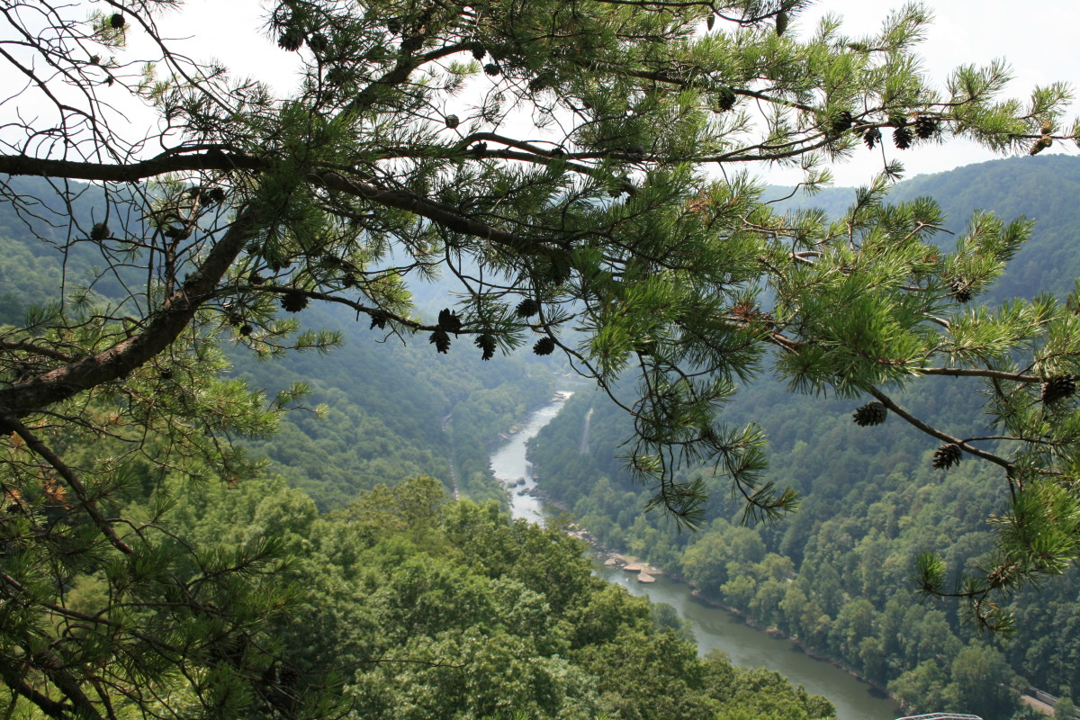 A view of the Gauley River.