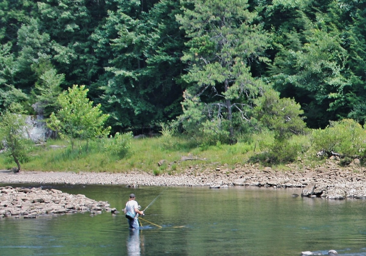 Like to fish? There are plenty of opportunities near Cranberry Glades.