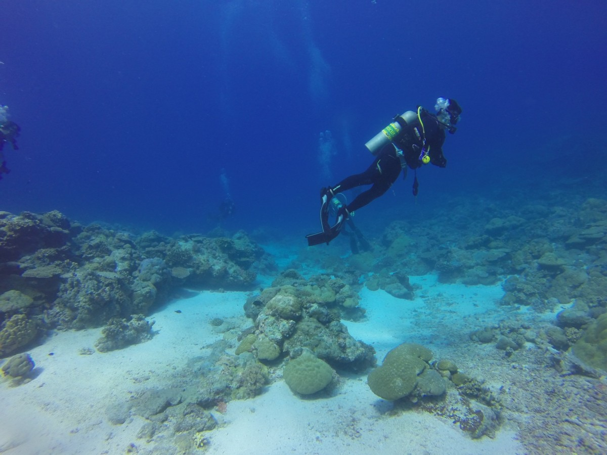 salvage-diving-and-treasure-hunting-in-the-bahamas