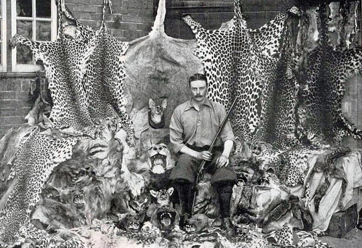 Indiscriminate hunting by Europeans certainly did a lot to decimate exotic wildlife in the 19th-early 20th century (photo from 1899, Somaliland)