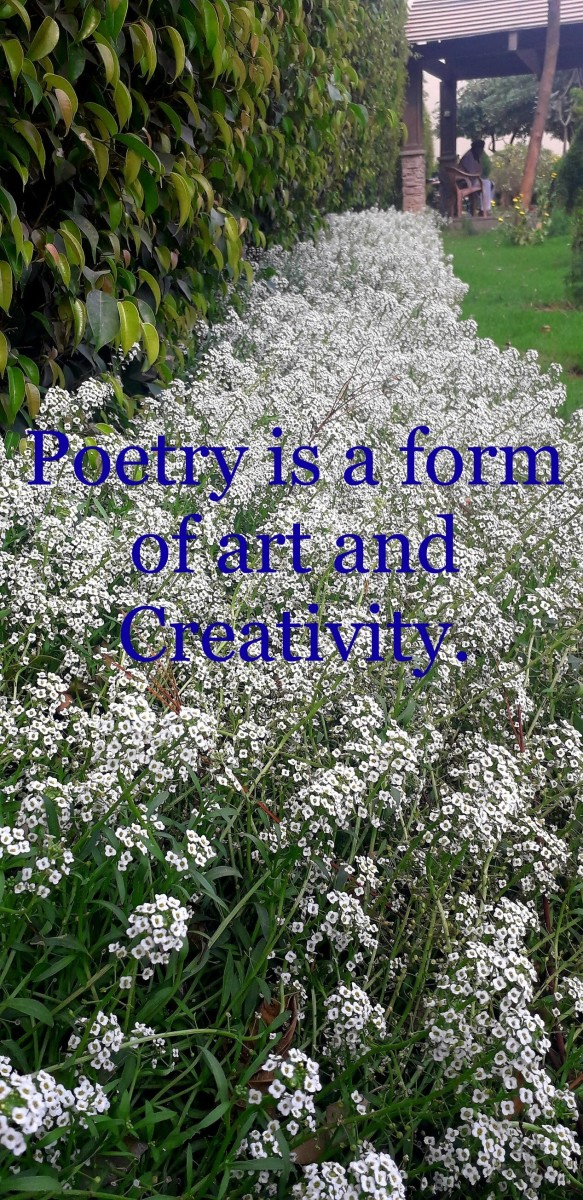 Poetry is a form of art and creativity.