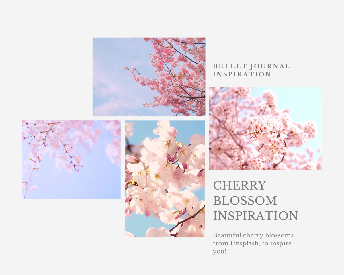 These cherry blossoms would an aesthetic touch to any journal!