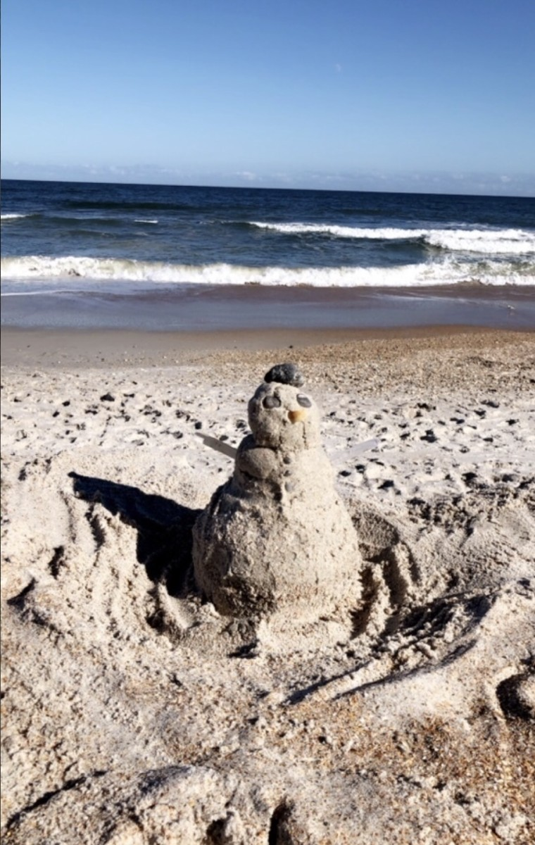 A photo by my granddaughter from the Florida beaches.