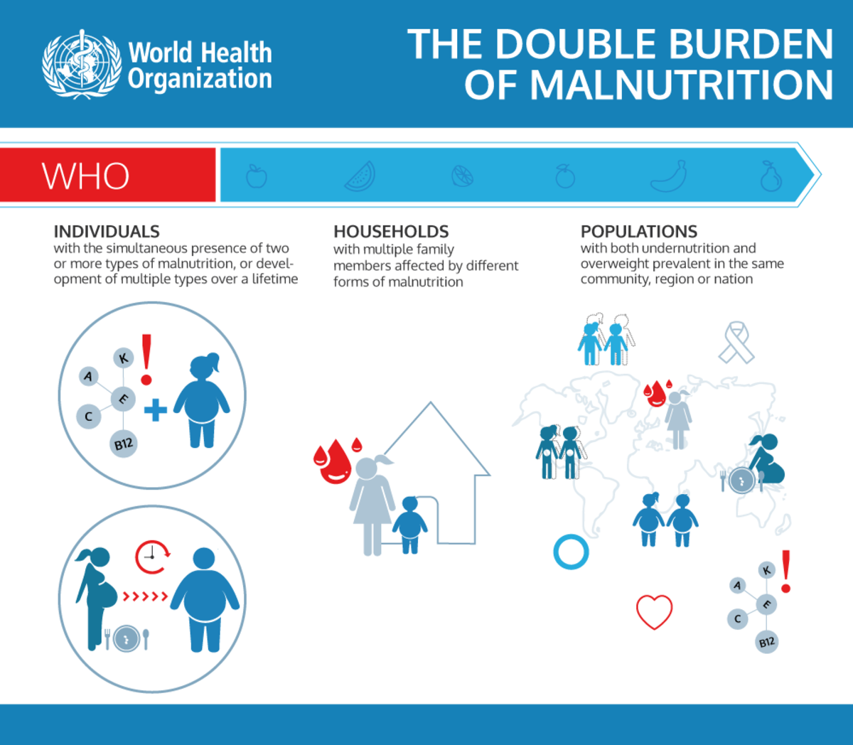 Policy Brief by WHO showing the three levels where the Double Burden of Malnutrition manifests.