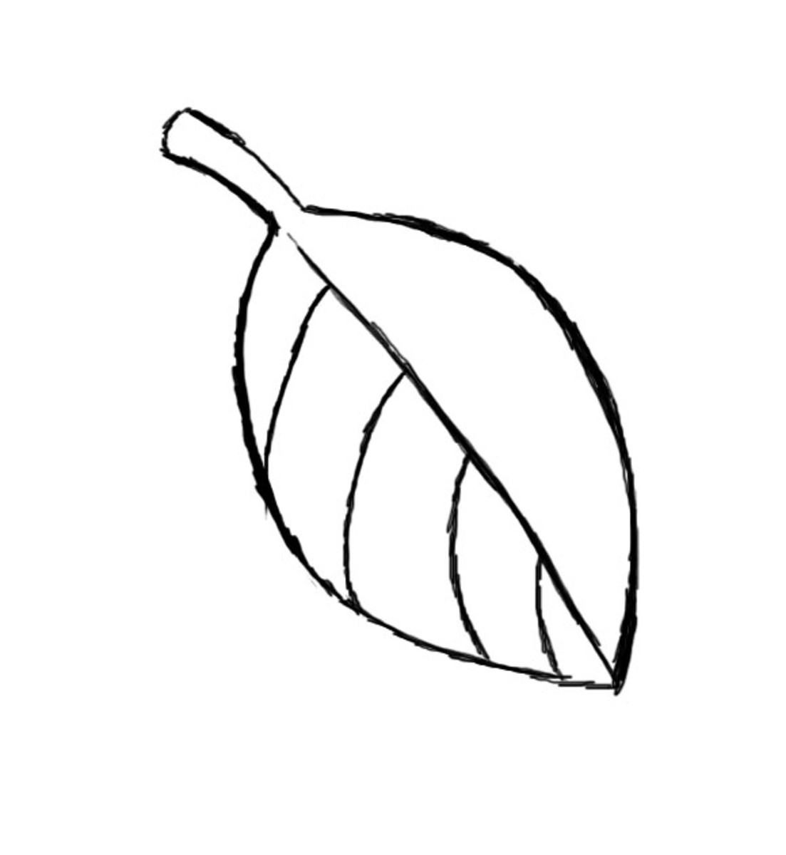 how to draw a maple leaf easy
