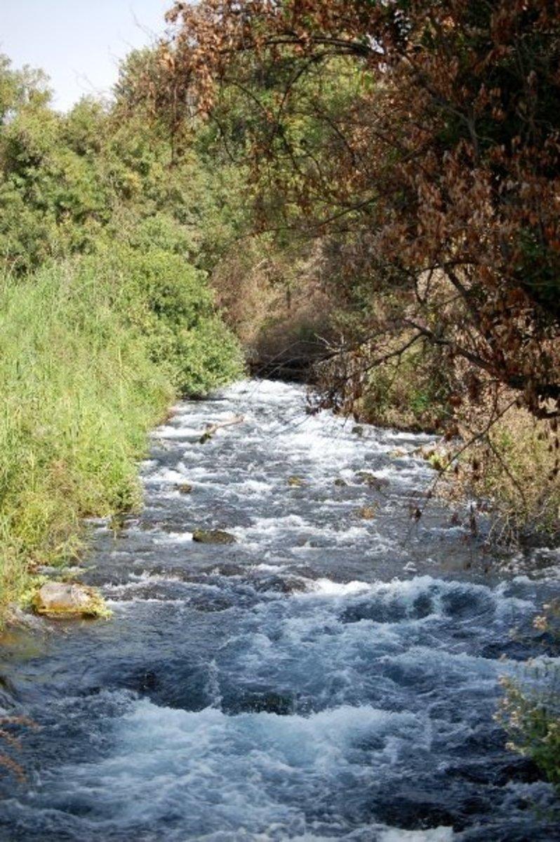 THE DAN RIVER