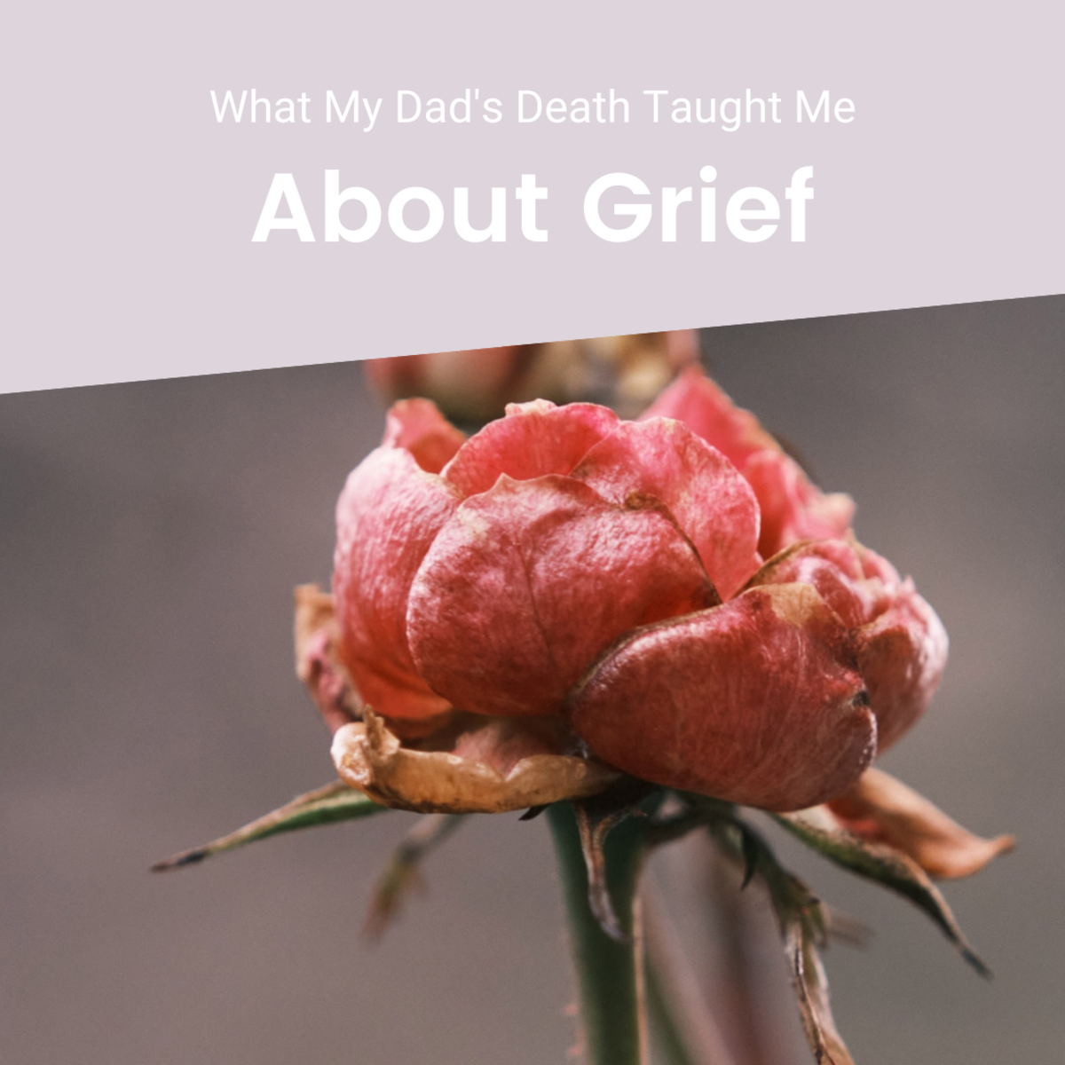 My dad died by suicide three years ago. Here's my experience of going through the stages of grief and what I've learned about grief itself.