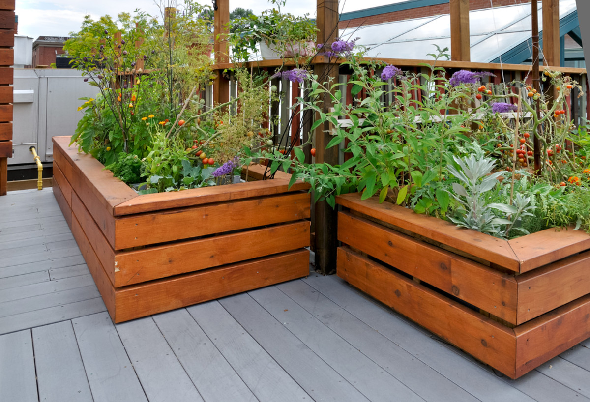 A Raised Beds Kit Can Make Gardening Easier For The Elderly or Disabled Too.