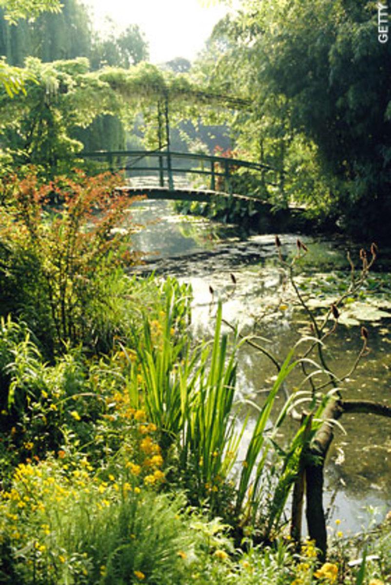 www.telegraph.co.uk/gardening/