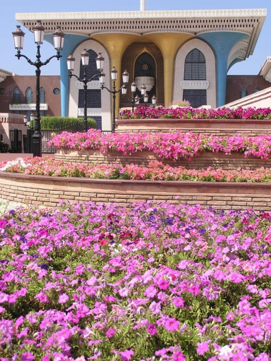 Beautiful Gardens by the Sultan's Palace in Muscat http://fabularz.wordpress.com/2009/04/17/sand-in-your-pita-sand-in-your-ear/