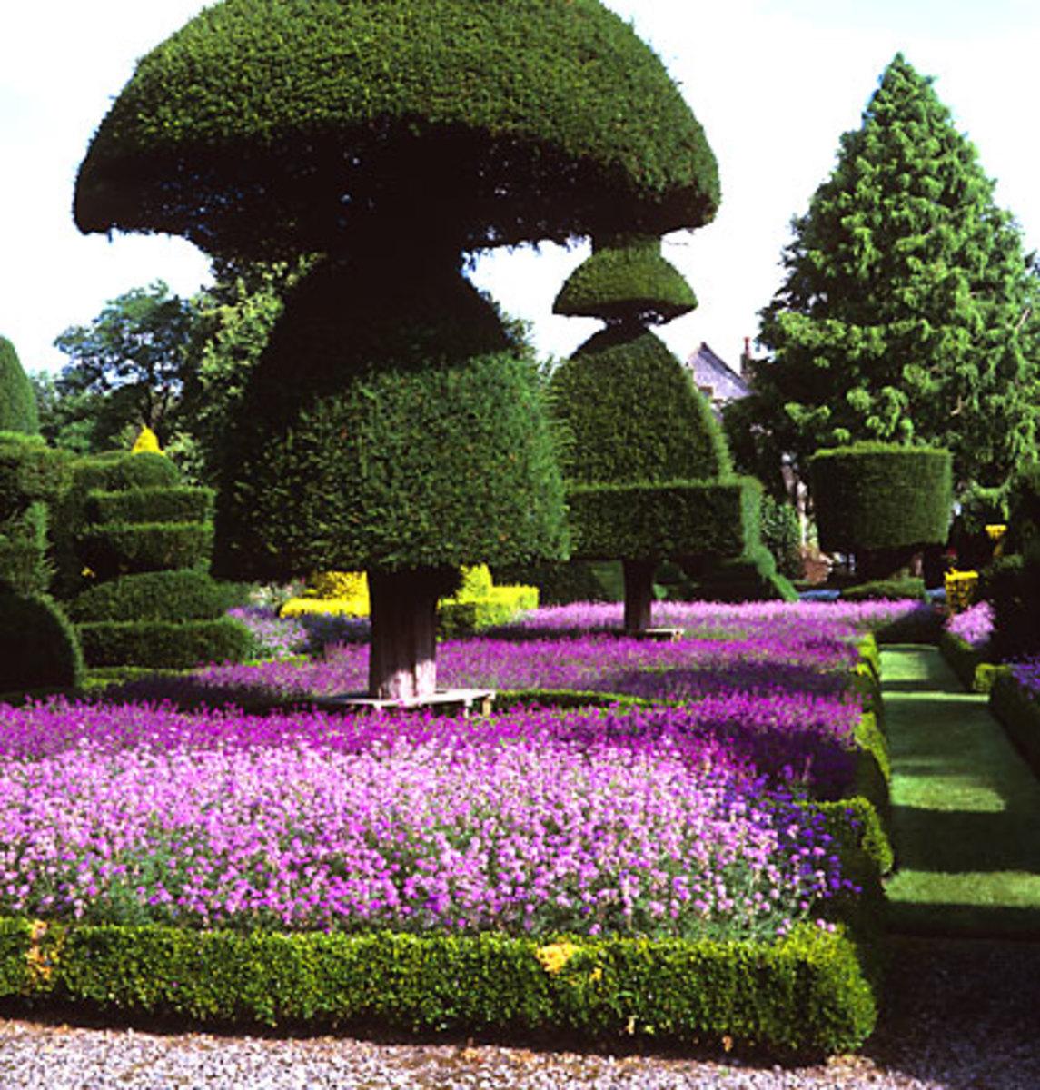 Photograph by Garden Collection
