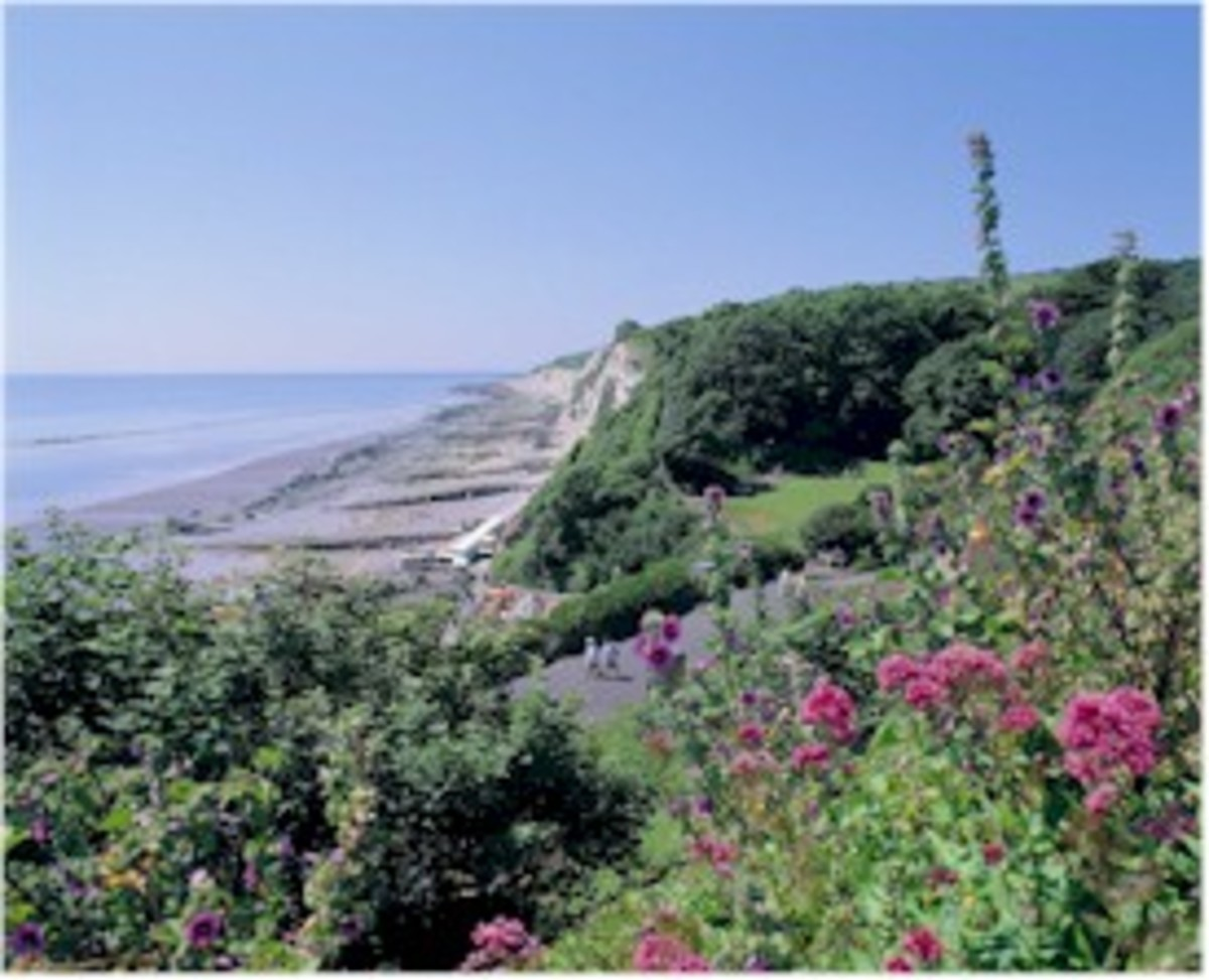 http://www.eastbourne.org/tourism/parks_gardens/images/holywell.jpg