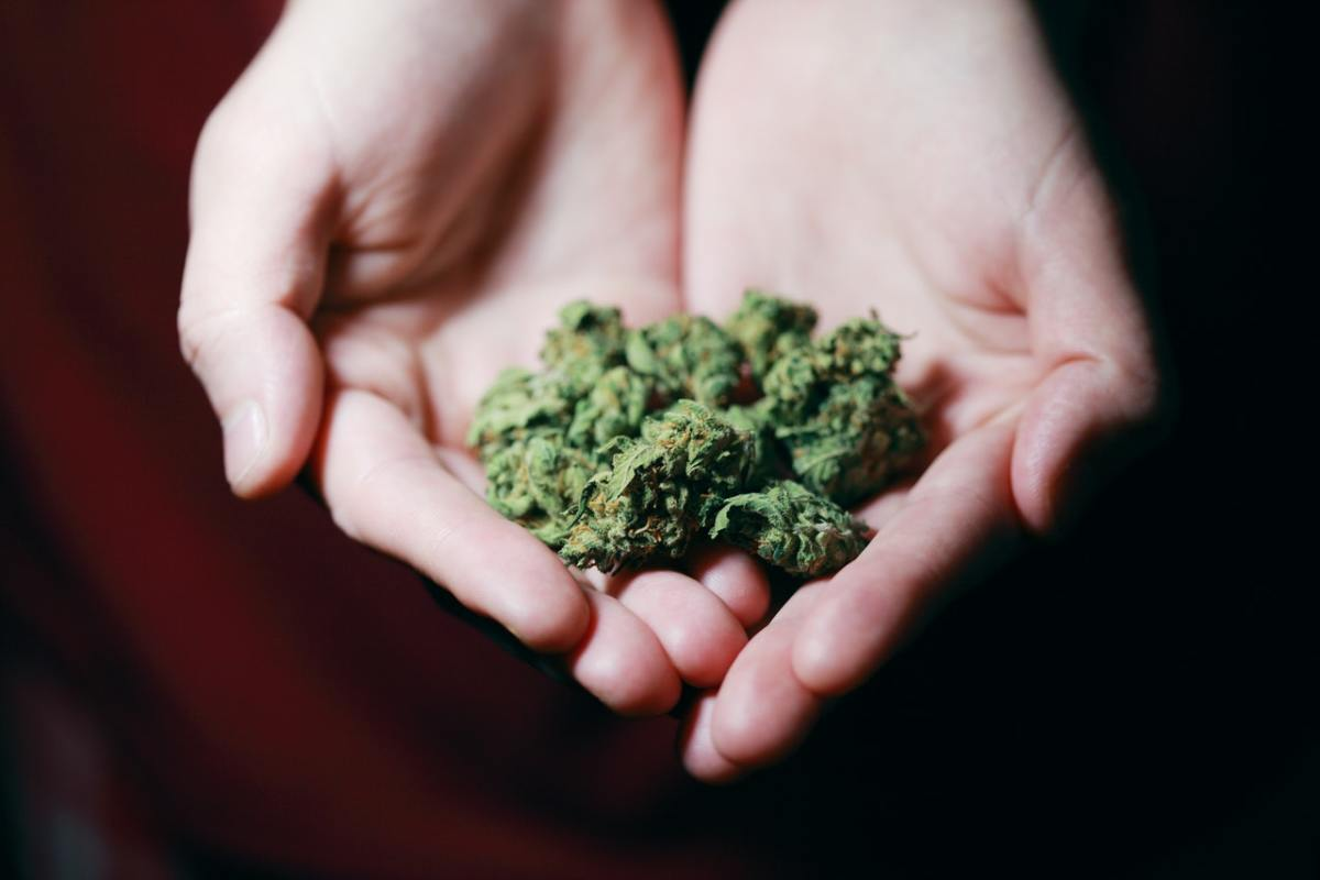 the-two-day-marijuana-challenge