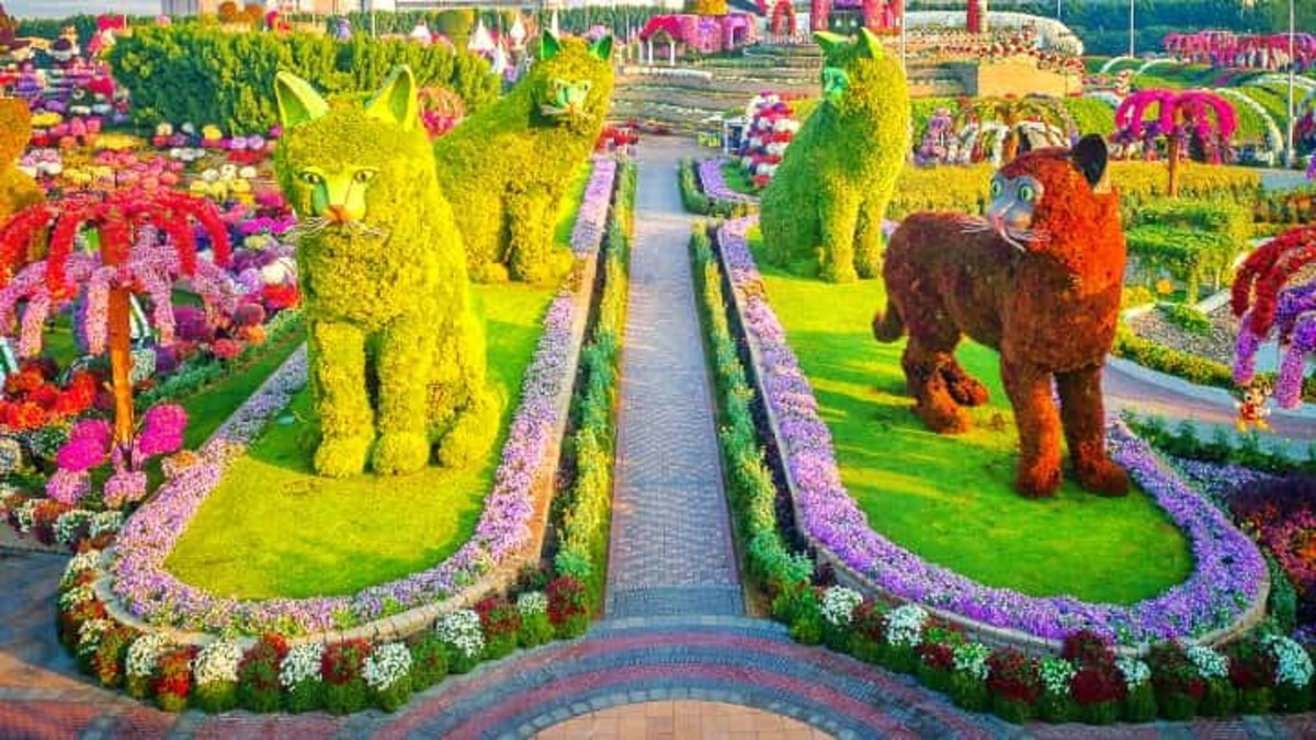 A topiary art made of four cats known as quadruplet cats