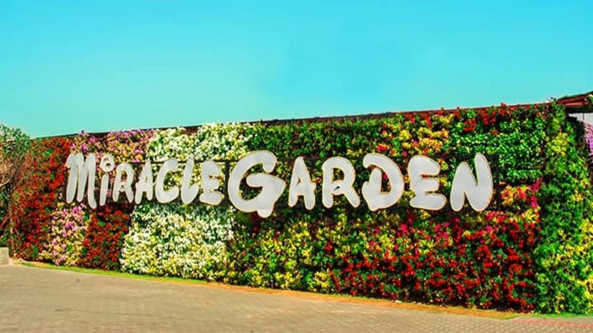 Longest flower wall in the world 2013