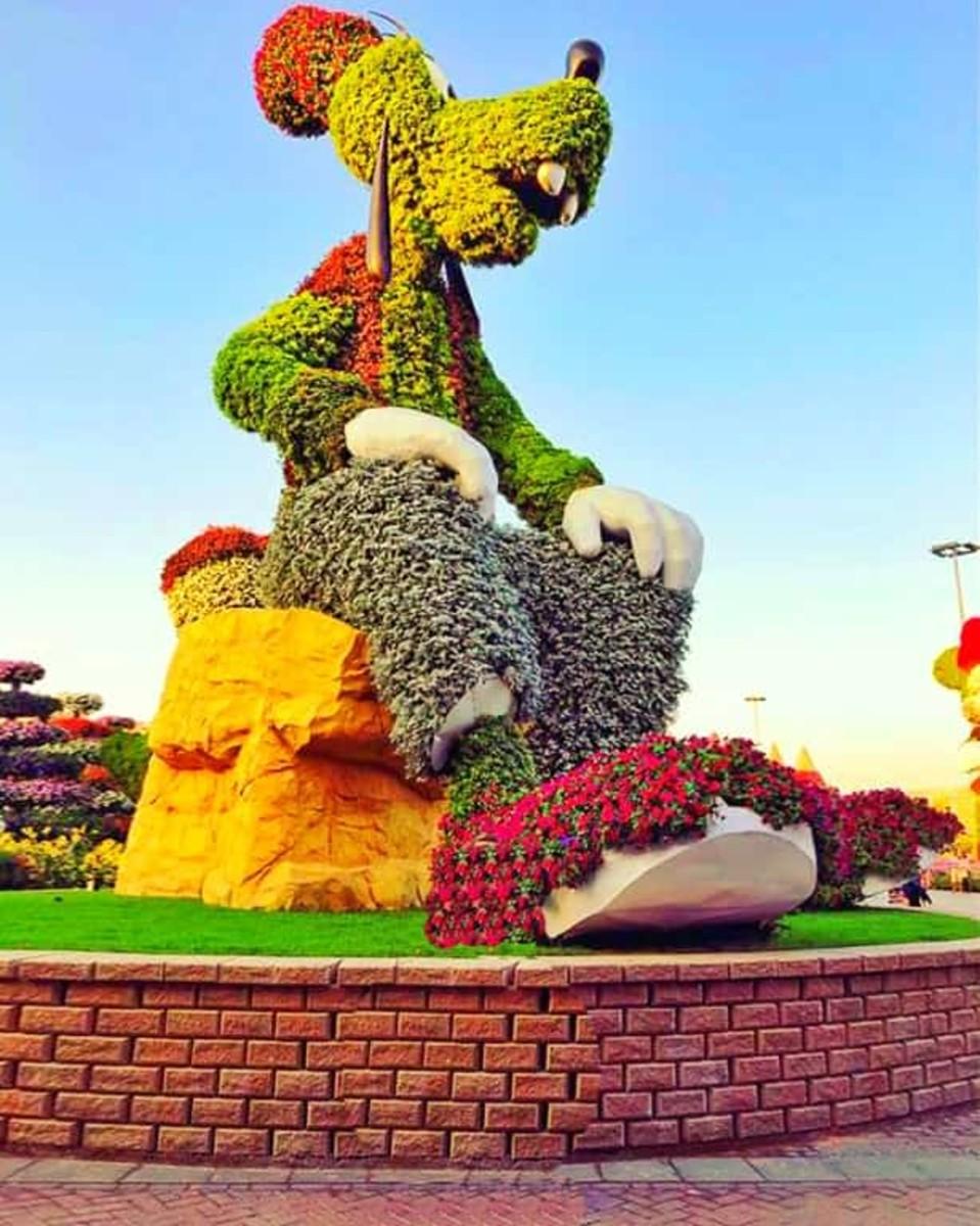 Topiary Art of Walt Disney's Goofy character