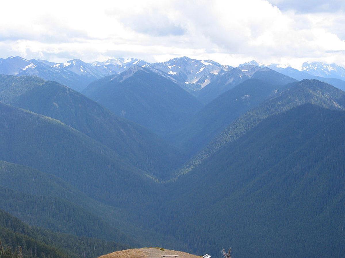 Vista from Hurricane Ridge, Olympic Mountains, Washington
