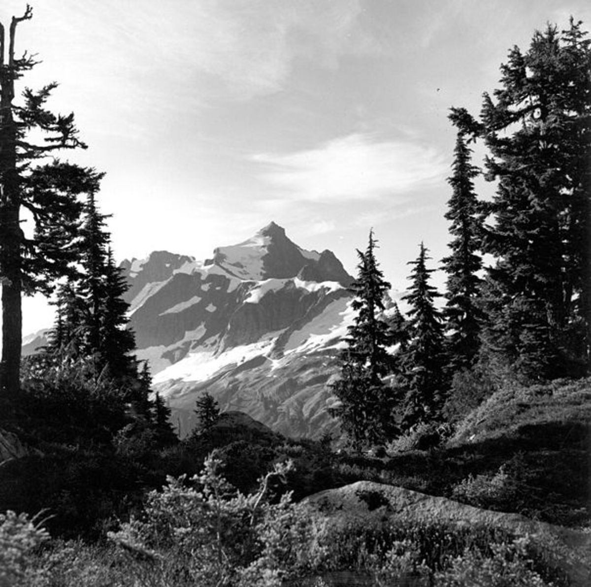 Mt. Despair in the North Cascades National Park