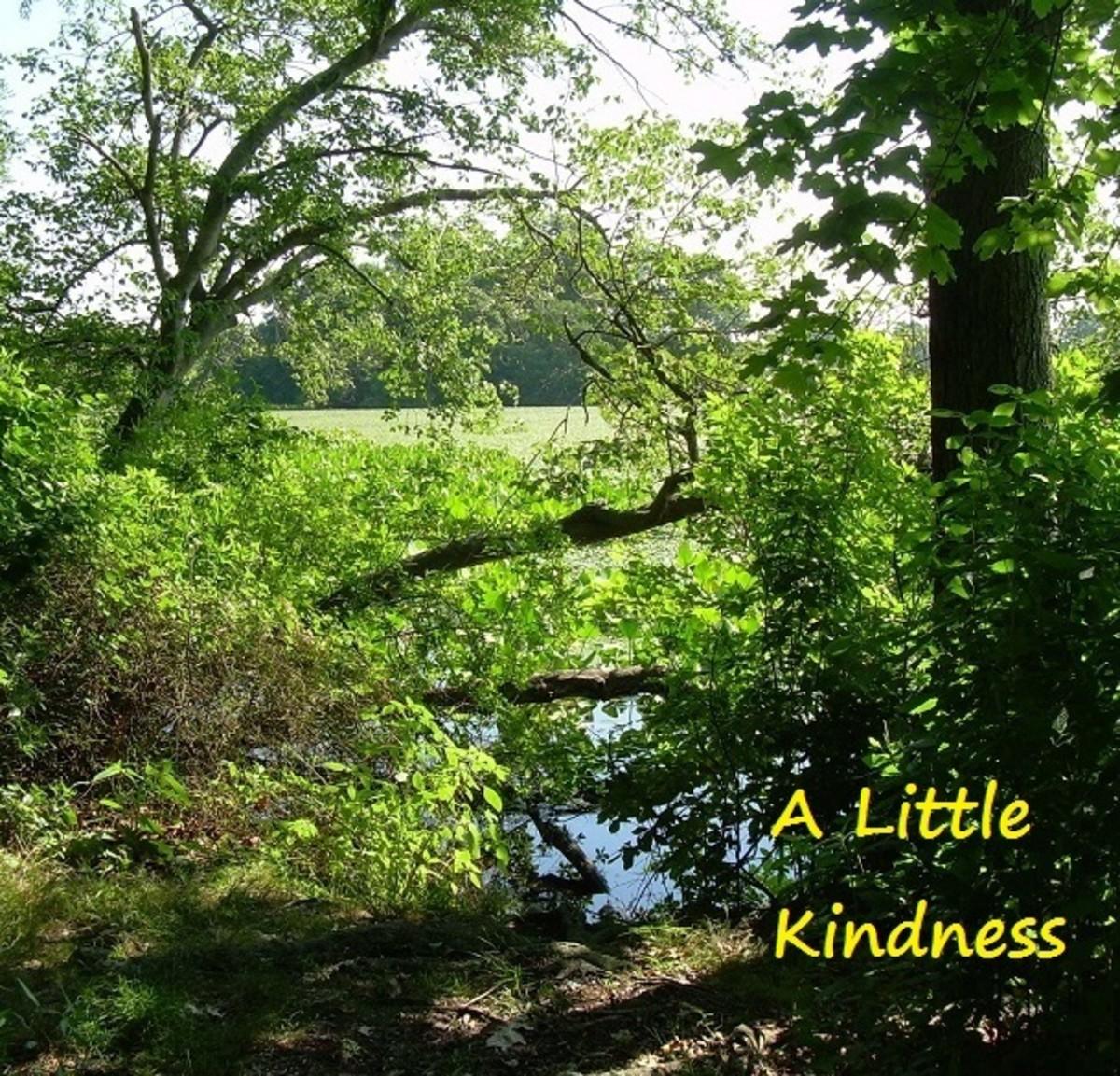 a-little-kindness