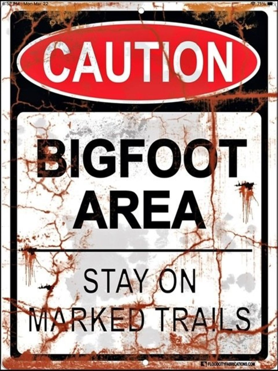 an-interview-with-bigfoot-a-flash-fiction-story