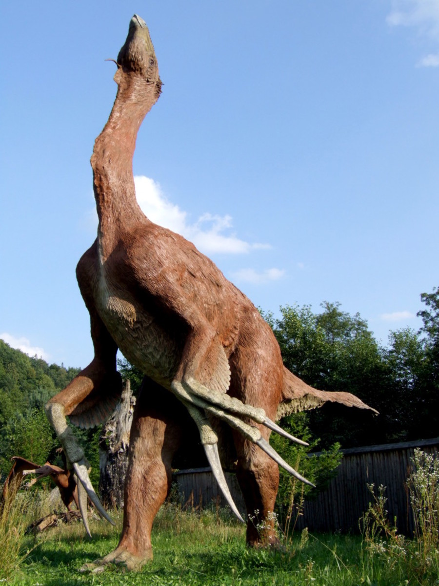 It was tall, ugly with claws like of a cat and had a structure similar to a giant zebra.