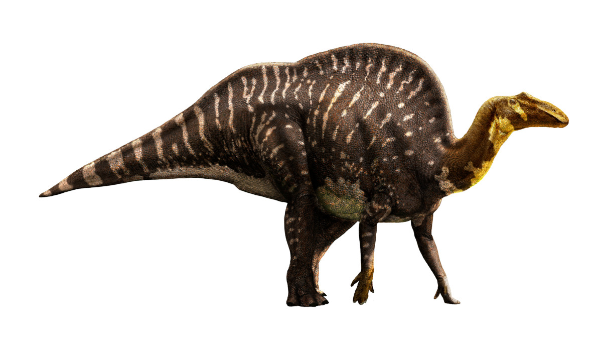 Imaginary scene Ouanosaurus walking in Africa in old times