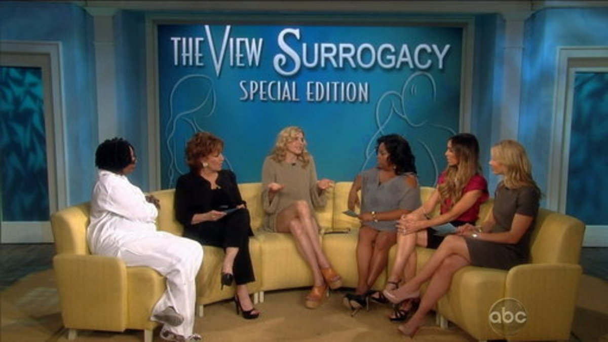 A lively debate of surrogacy on the TV show, The View, showed just how controversial surrogacy still is since it was first legally utilized in the Mid 70s.
