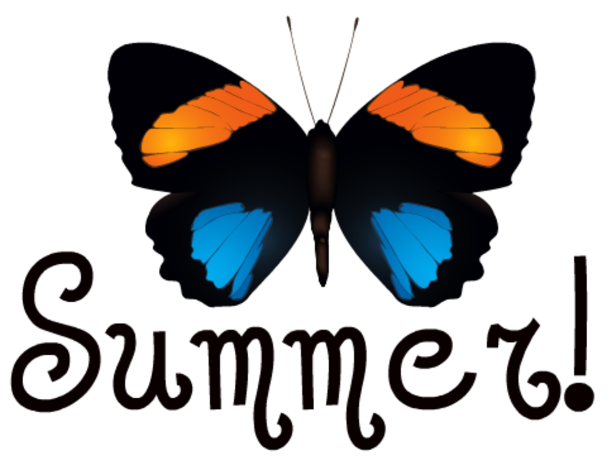 Orange and blue butterfly summer clip art