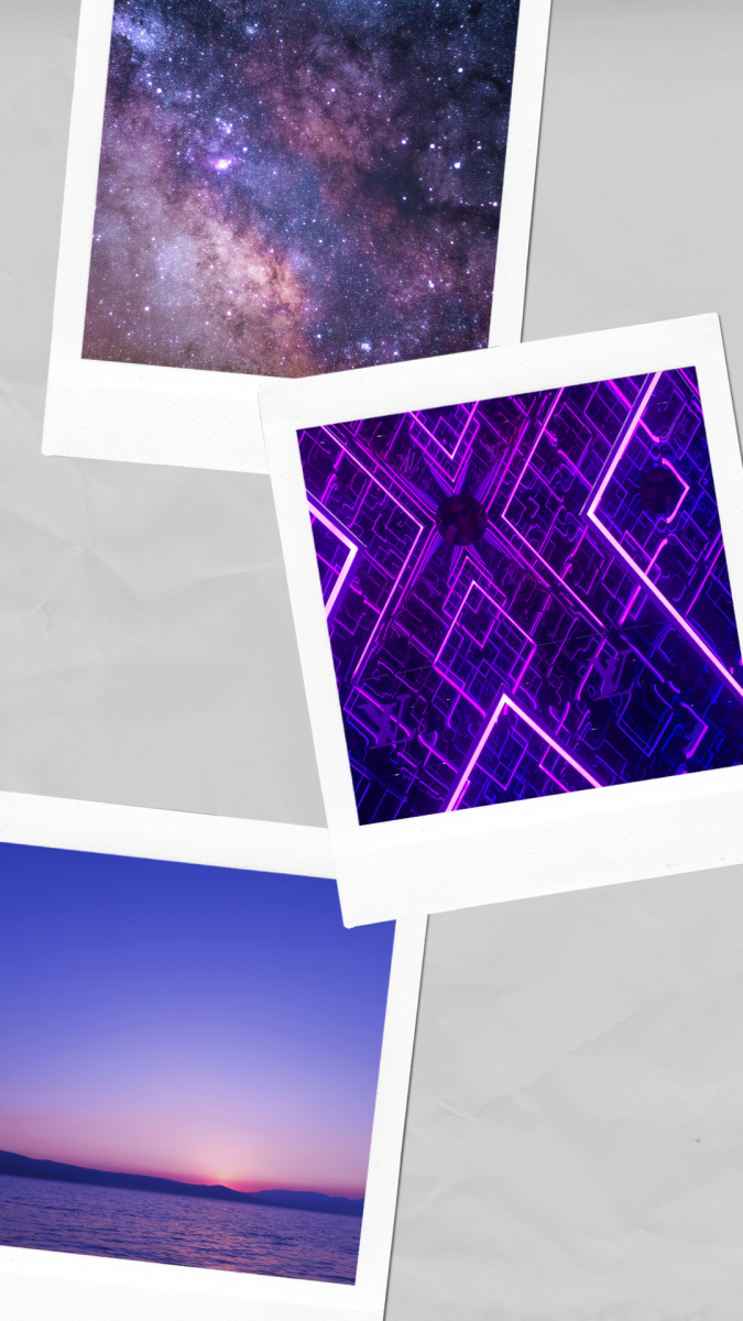 The purple skies and cosmos work beautifully with the neon purple pattern!