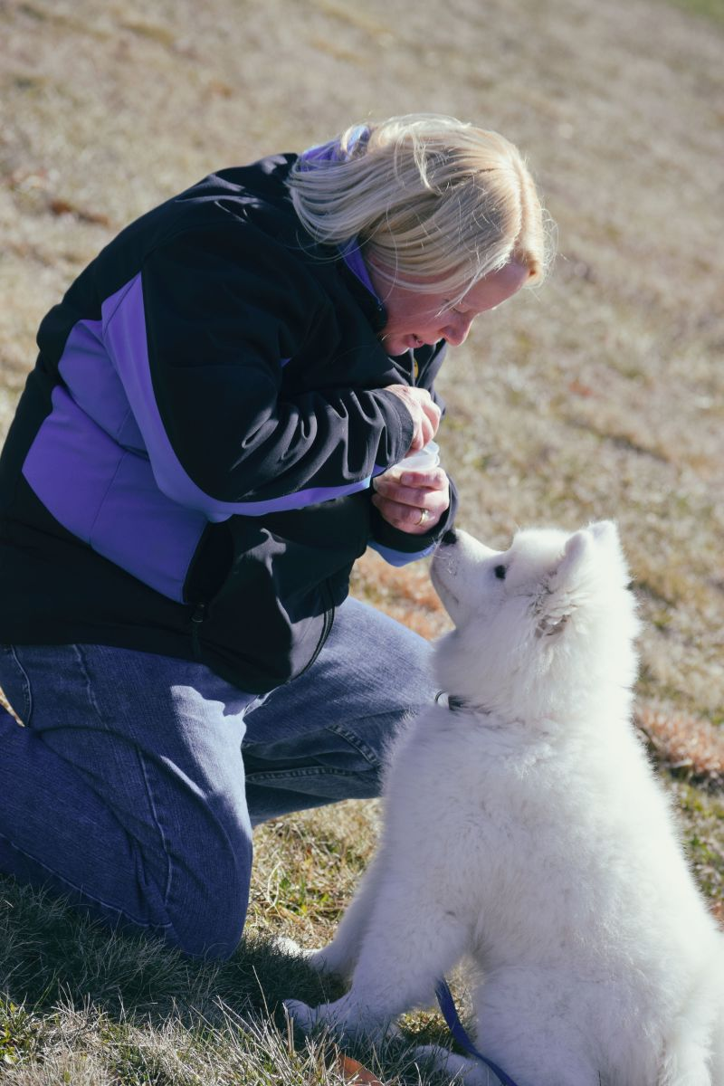 Puppy House Training Tips