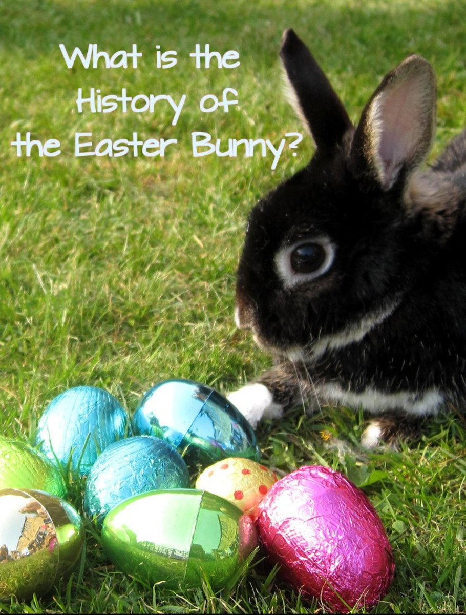 Ever wondered where the Easter Bunny came from and where it originated?