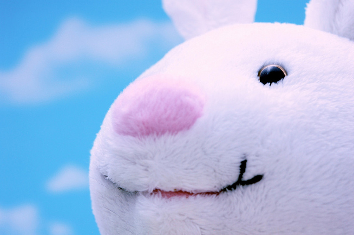 The Easter Bunny has become a secular element to what is meant to be a religious holiday.