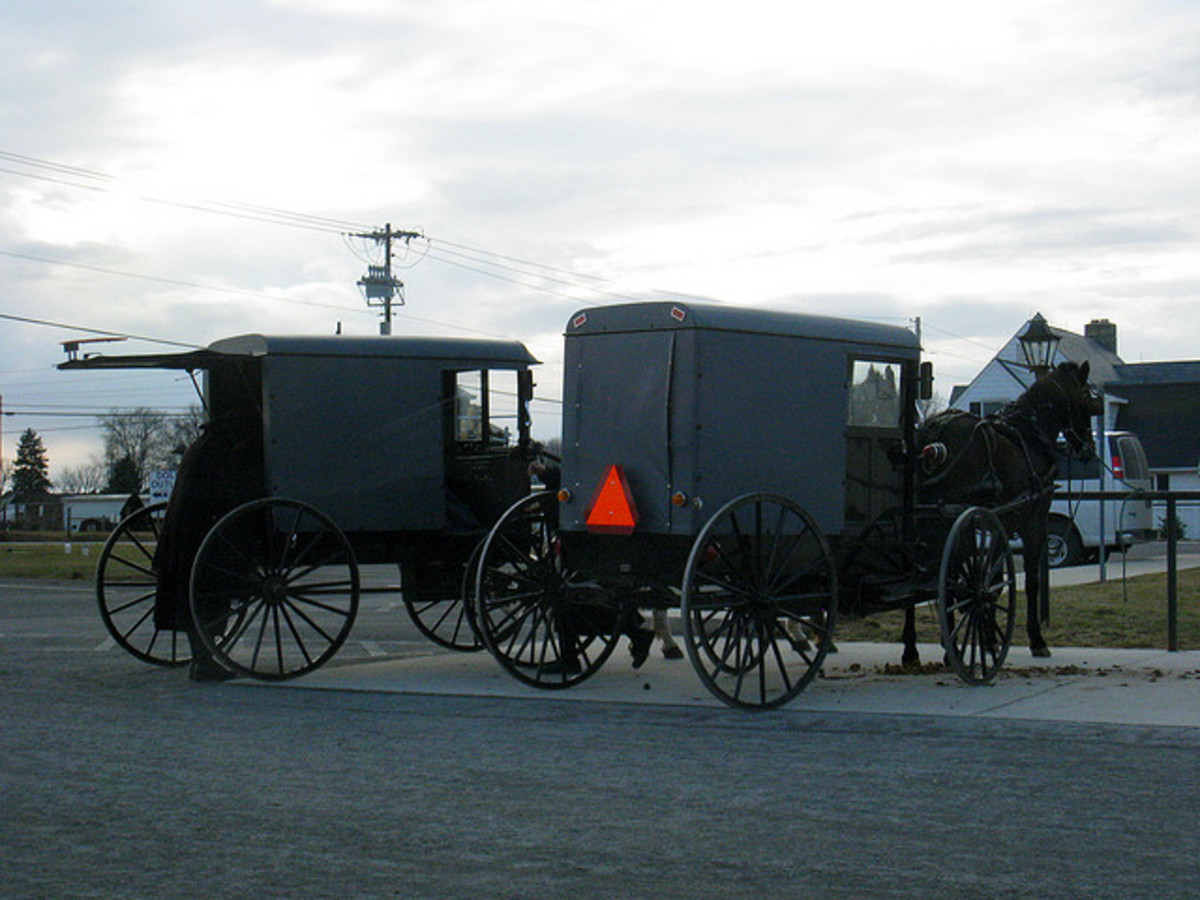 The Pennsylvania Dutch (or Deutsch) are also commonly known as the Amish.