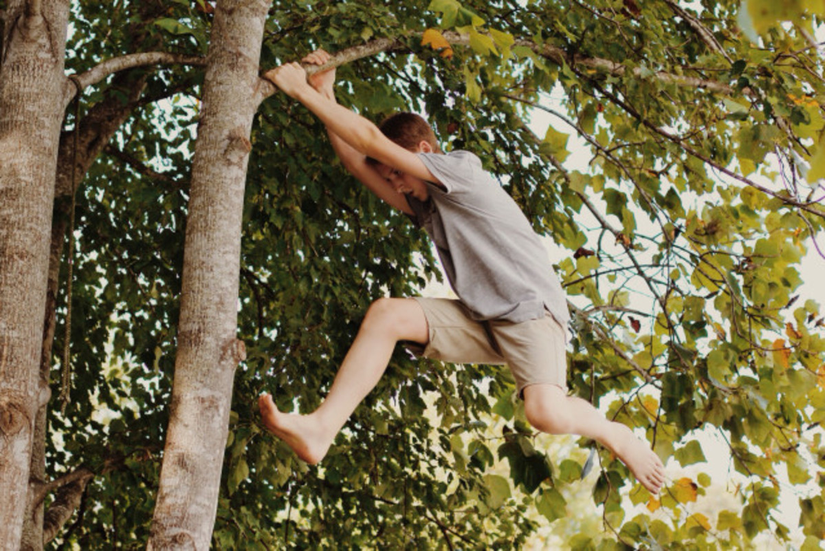 There's something magical about boys and climbing trees.