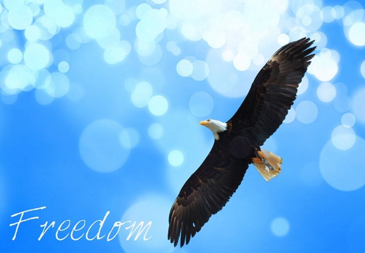 the-ramblings-of-a-faith-filled-family-oriented-proud-patriotic-american-woman