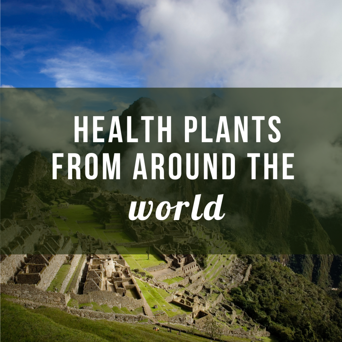 Healthy Plants From Around the World