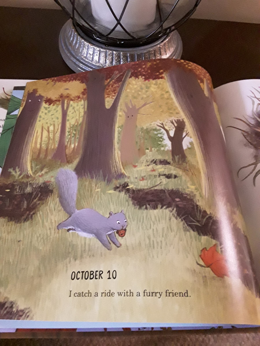 growing-bigger-as-told-by-a-little-acorn-in-charming-picture-book