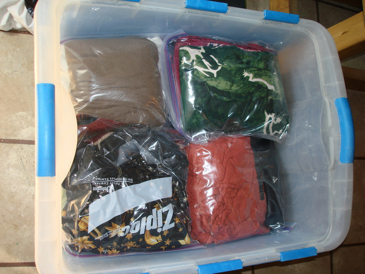 Keeping things in bags keeps them clean and organized. Keeping the bags in bins makes everything easier.